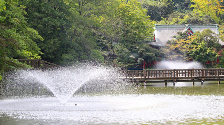 井の頭公園の井の頭池